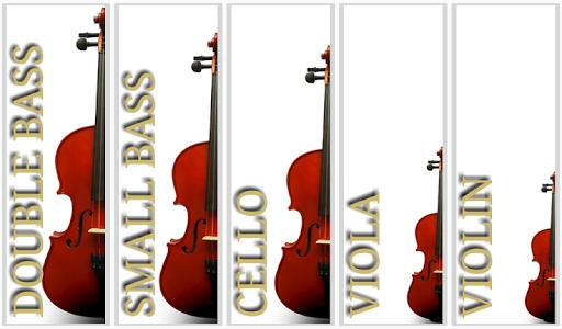 Maple Violin 3.0.1 screenshots 19