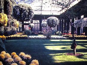 Photo: Longwood Botanical Garden, PA