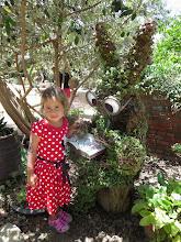 Photo: The Botanical Garden Rabbit