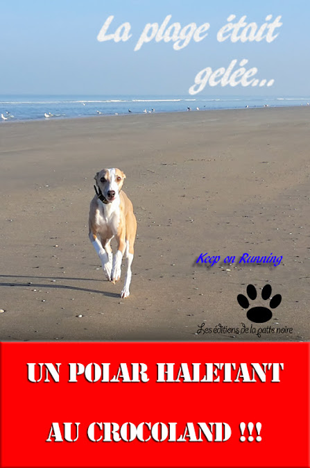 La_plage_etait_gelee