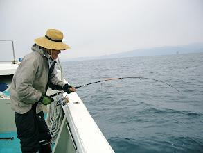 Photo: これは、よく引く! 上がった魚、ヒラスでした!