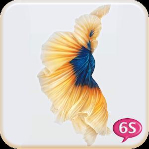 Betta Fish 6S Live Wallpaper