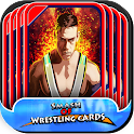 Smash of Wrestling cards icon