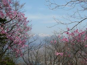 Photo: 中央は白根山