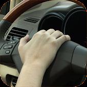 Car Horn Sounds