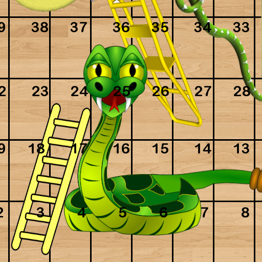 Snakes Ladders (game)