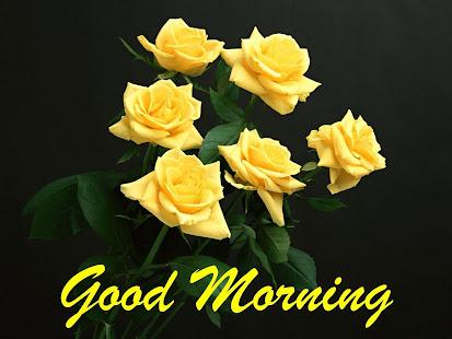 早安花卉壁紙七彩玫瑰4K