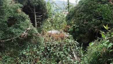Photo: Muñón oculto al suroeste de la estatua de Bolívar DSC03738.JPG