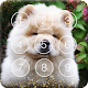 Download Cute Puppies Chow Chow Dog Screen Lock For PC Windows and Mac