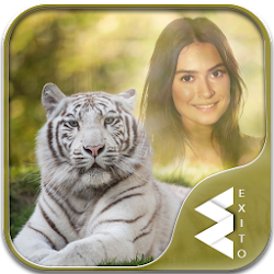White Tiger Photo Frames