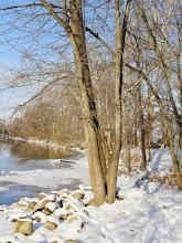 Photo: Sunlight on a snowy river at Wegerzyn Gardens in Dayton, Ohio.