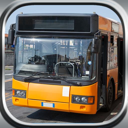 City Bus Driver