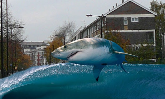 Shark jumping on Wick Road near St. Dominic's Primary School following the reinstatement of Hackney Brook.