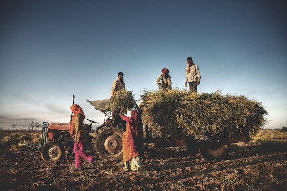Miljoene word in Indië uitgesit weens verwerpte grondeise
