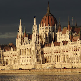Parliament Budapest by Pal Mori - City,  Street & Park  Historic Districts ( parliament, building, watrer, architecture, river )