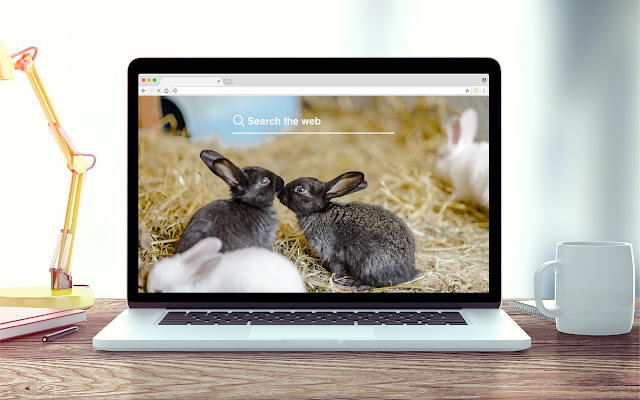Rabbits and Bunnies New Tab Theme