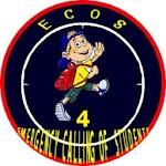 ECOS - 4 Icon