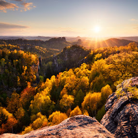 Golden spring by Pavel Klásek - Landscapes Sunsets & Sunrises ( park, national, saxon, sandstone, carolafelsen, forest, rock, valley, spring, sun, tree, nature, autumn, switzerland, suset, view, hike )