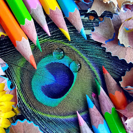 Pencils  by Asif Bora - Artistic Objects Education Objects (  )
