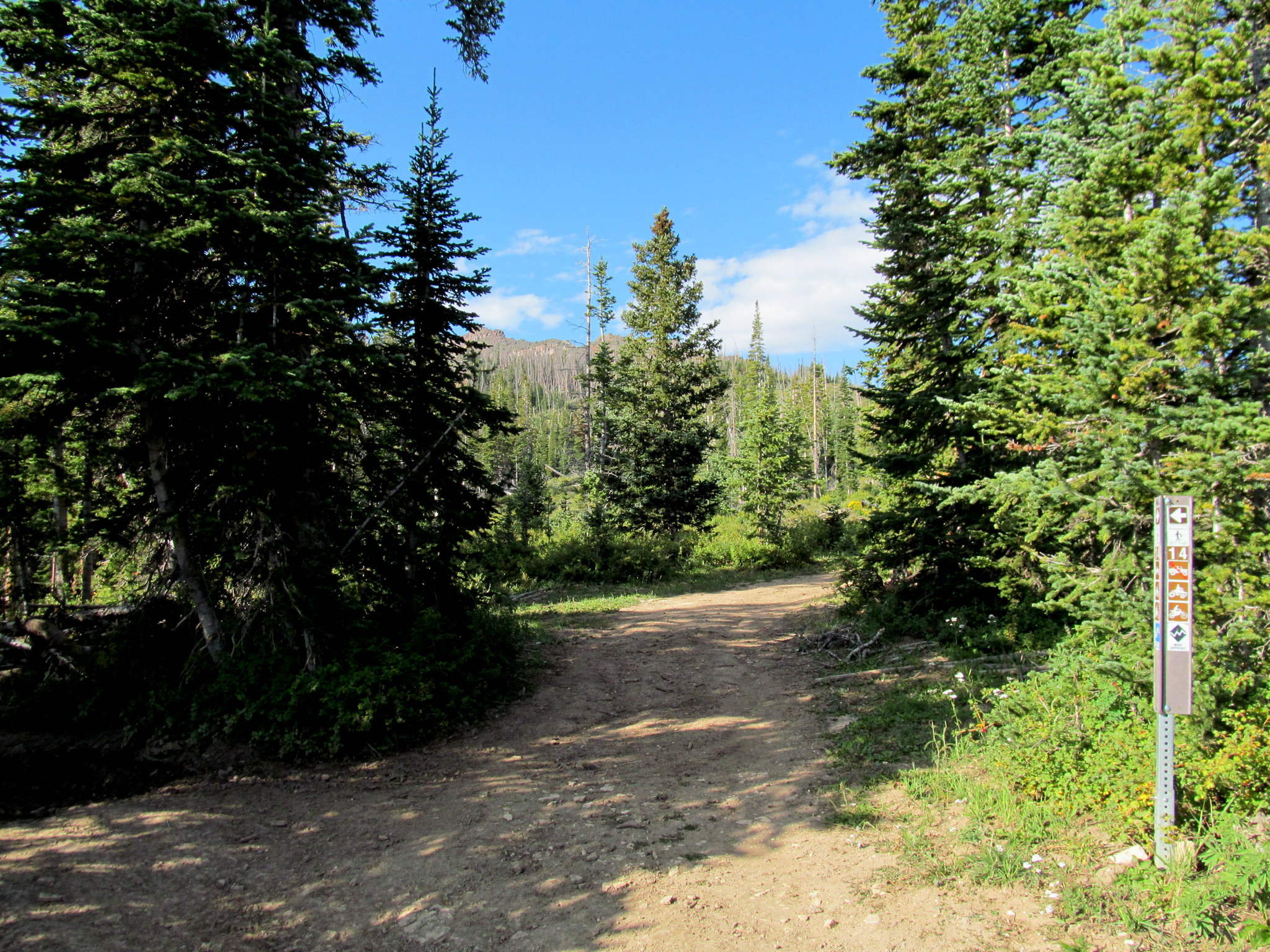 Photo: Beginning of the hike at UM Pass