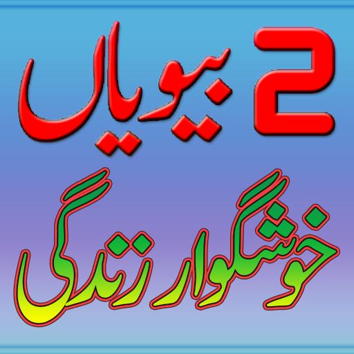 2 Biwiyan Khushgawar Zindgi