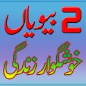 2 Biwiyan Khushgawar Zindgi icon