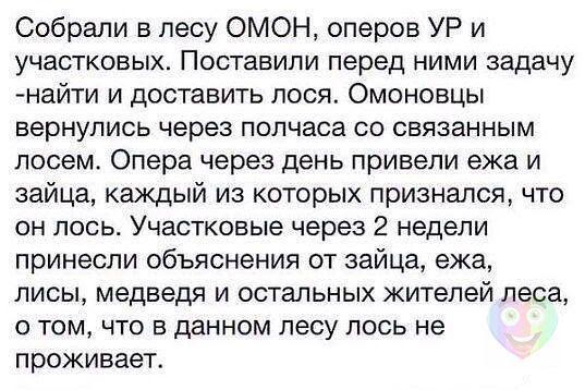 OYCX3M Klyi8eYzdLkW3zh 3IAsjbOqMvLg6v1dg8q0=w537 h358 no - Волгоградцы, улыбаемся и машем))))!