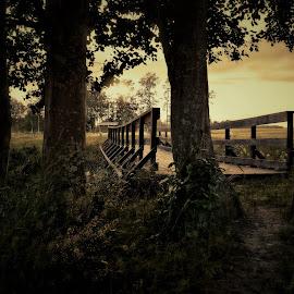 Bridge to tranquility by Micke Lindblå - Landscapes Prairies, Meadows & Fields ( #bridge, #sweden )