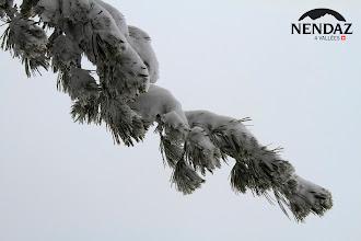 Photo: 20.01.2012