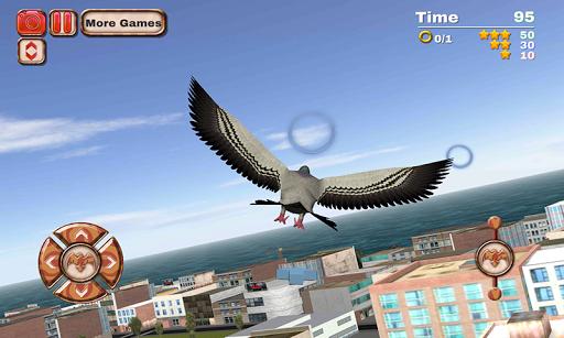 市鸟飞行模拟器2015