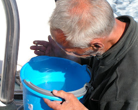 Photo: Ну где же планктон?/Where in the hell is plankton?