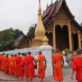 Monks in Laos by Mylene Rizzo - City,  Street & Park  Street Scenes ( monks, luangprabang, asia, budism, laos )
