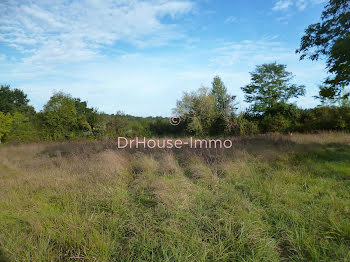 terrain à Frontenac (33)