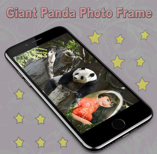 Giant Panda Photo Frame 1.1 screenshots 1