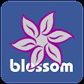 Blossom TV Guide