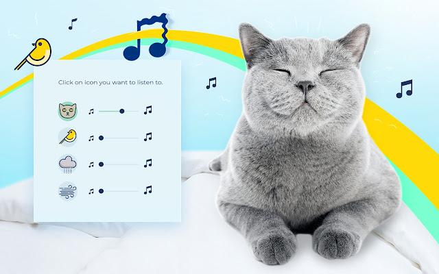 Cat Meow Sound