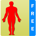 BodyParts for Kids icon