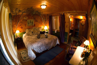 Photo: Birch Room