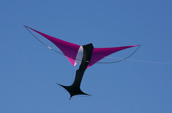 Photo: Wilson Wing by G-Kites