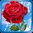 Summer Rain, Flowers, HD LWP logo