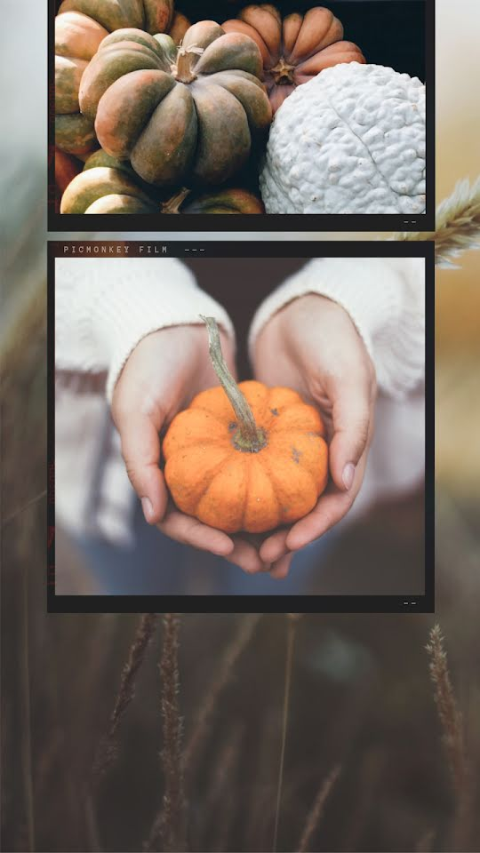 Autumn Squashes - Facebook Story Template