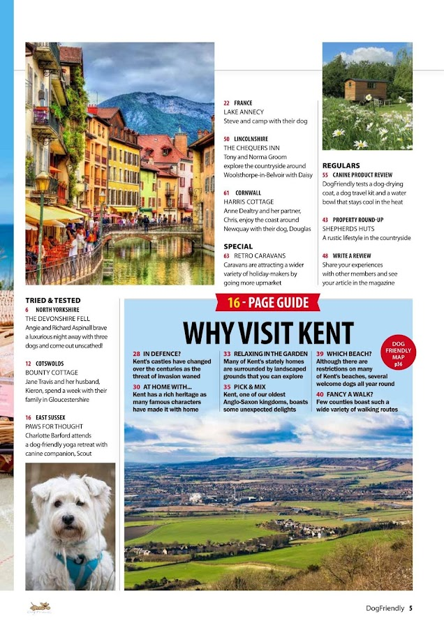 DogFriendly Magazine- screenshot
