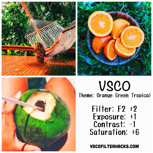 Orange Green Tropical Instagram Feed Using VSCO Filter F2