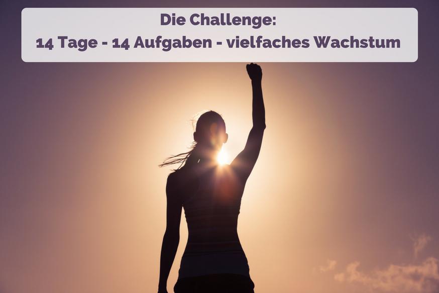 Challenge Online-Wachstum