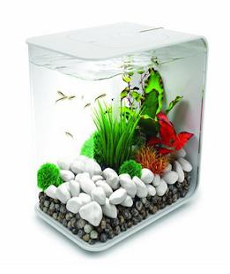 akvárium designu - náhled