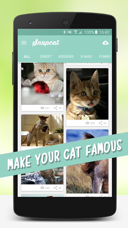 Cat Wallpapers Android Apps Appagg