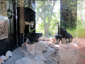 Photo: Definitely the world's strangest bathroom, but this one was not open to the public