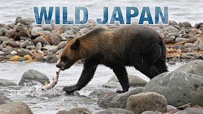 Wild Japan thumbnail