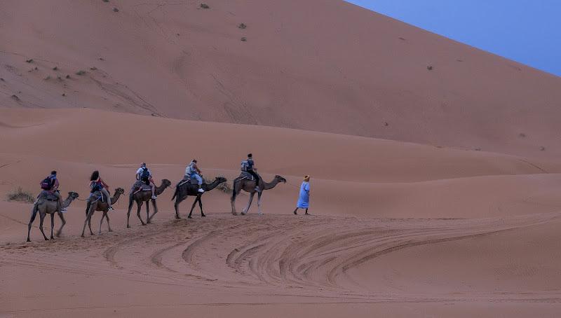 Desert move di Viola1