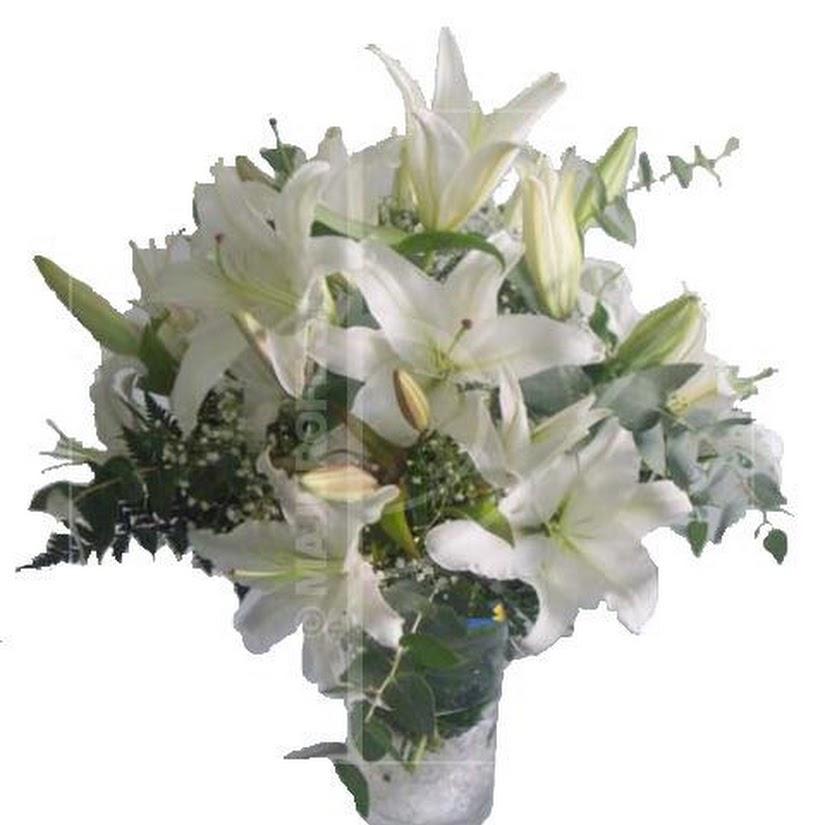 Lirios: una flor perfecta para decorar